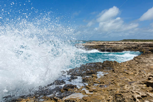 Waves Crashing over Devil's Bridge Coastline Antigua Stock photo © scheriton