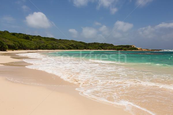 Gyönyörű arany homokos tengerpart fél hold tengerpart Stock fotó © scheriton