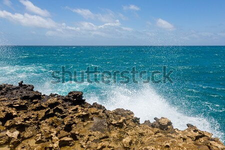 Waves Crashing on Rocky Coastline Devil's Bridge Stock photo © scheriton