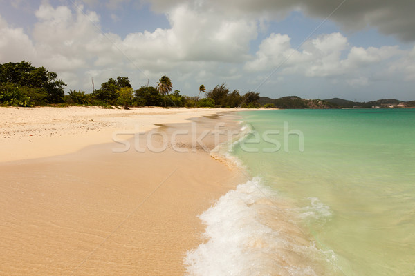 Sunny Tropical Caribbean Beach with Blue Cloudy Sky  Stock photo © scheriton