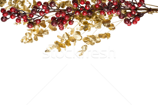 Sparkly Red Berries on Golden Leaves Isolated Border Stock photo © scheriton