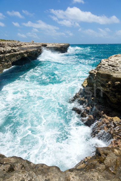 Waves Crashing on the Coastline Devil's Bridge Antigua Stock photo © scheriton