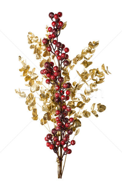 Sparkly Red Berries on Golden Leaves Isolated Background Stock photo © scheriton
