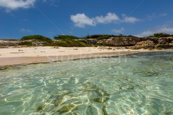 Idilli rusztikus trópusi Karib tengerpart víz Stock fotó © scheriton