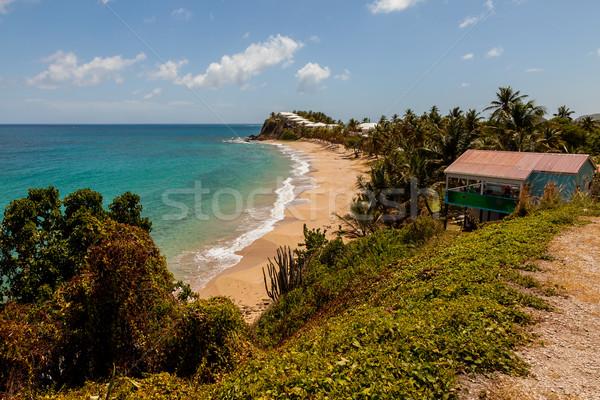 Gyönyörű napos trópusi Karib tengerpart tájkép Stock fotó © scheriton