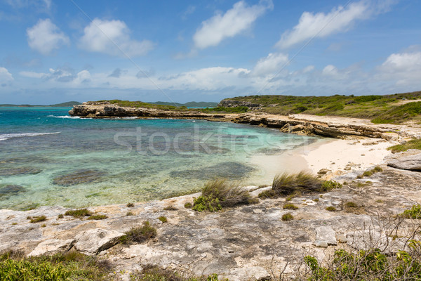 Beautiful Rustic Tropical Beach Antigua Stock photo © scheriton