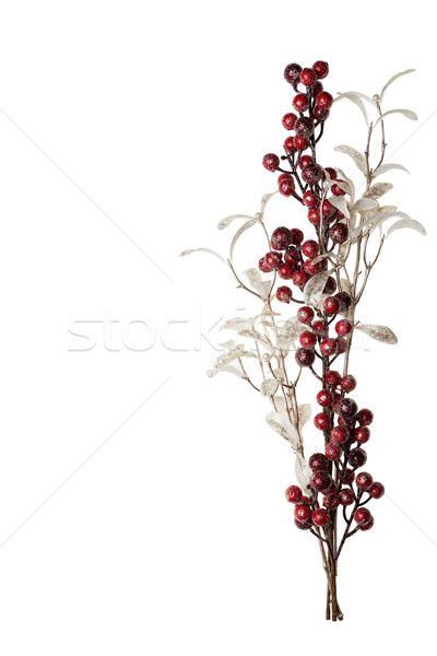 Sparkly Red Berries and Silver Glitter Pearl Leaves Background Stock photo © scheriton