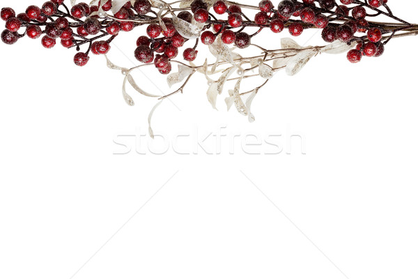 Sparkly Red Berries and Silver Glitter Pearl Leaves Border Stock photo © scheriton