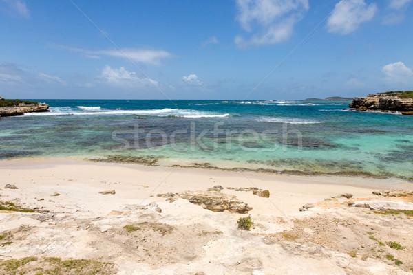 Güzel rustik caribbean kumlu deniz su Stok fotoğraf © scheriton