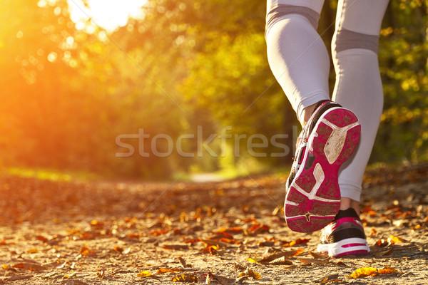 Kobieta uruchomiony lesie fitness dziewczyna lasu Zdjęcia stock © sdecoret