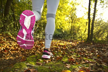 Woman running in the woods Stock photo © sdecoret
