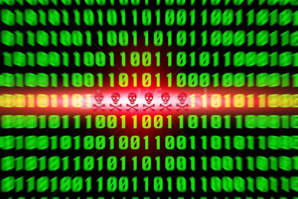 Virus avvisare rosso verde codice binario computer Foto d'archivio © sdecoret