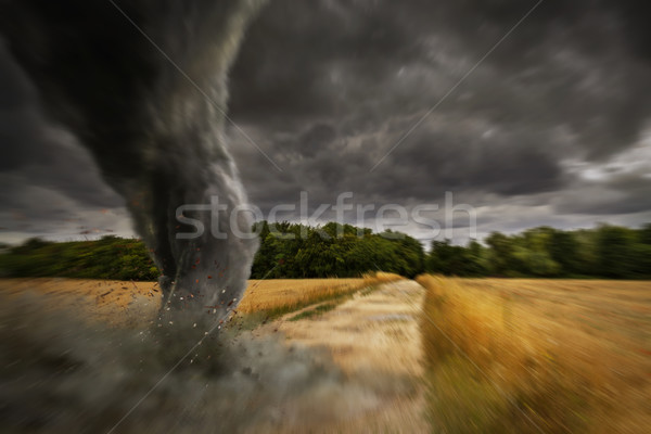 Tornade catastrophe vue ciel nature Photo stock © sdecoret