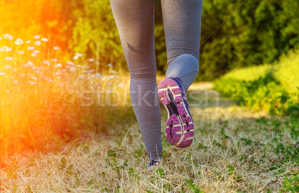 Woman running at sunset in a field Stock photo © sdecoret