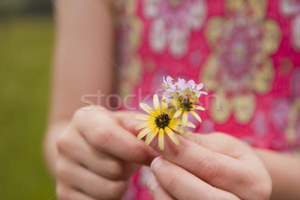 Fiatal lány tart virágok közelkép lány kezek Stock fotó © sdenness
