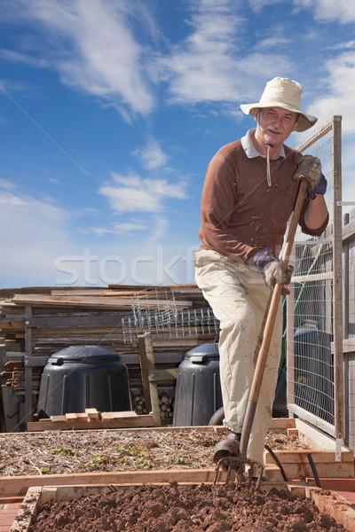Udvar kertészkedés idősebb férfi kert ágy Stock fotó © sdenness