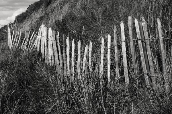 Wood Fence On Scotland Hillside Stock photo © searagen