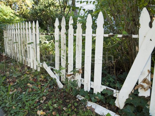 Foto stock: Branco · cerca · queda · velho · madeira