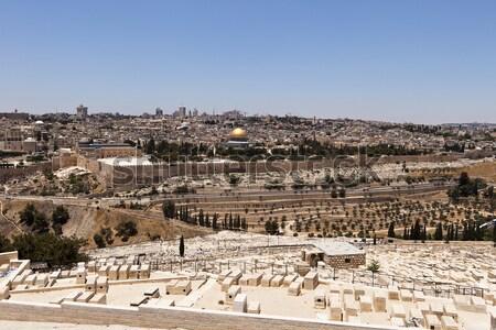 Jerusalém panorama panorâmico ver velho cidade Foto stock © searagen