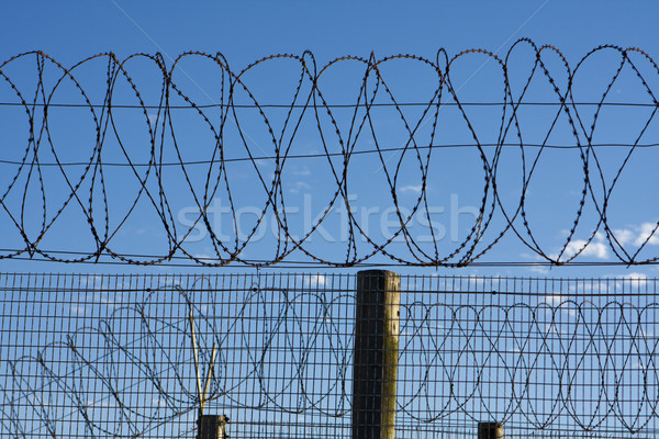 Prison Barbed Wire Stock photo © searagen
