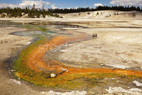 Córrego géiser pintado brilhante verde laranja Foto stock © searagen