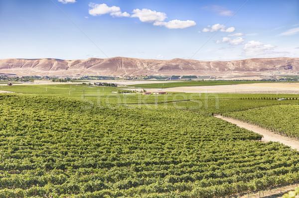 Piros hegy kilátás amerikai keleti fél Stock fotó © searagen
