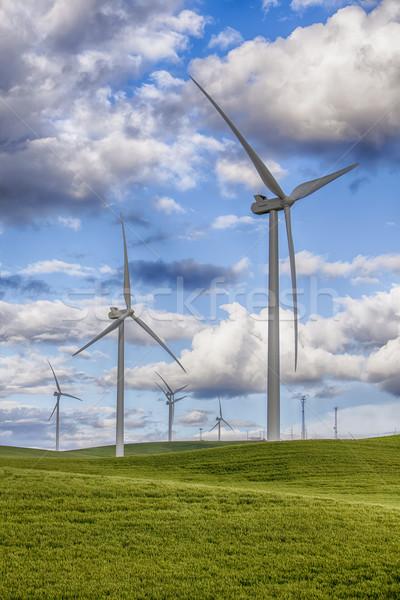 Farma wiatrowa nowoczesne wiatr pszenicy Zdjęcia stock © searagen