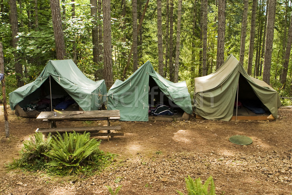 Tents At Boy Scout Camp stock photo © Matthew Ragen