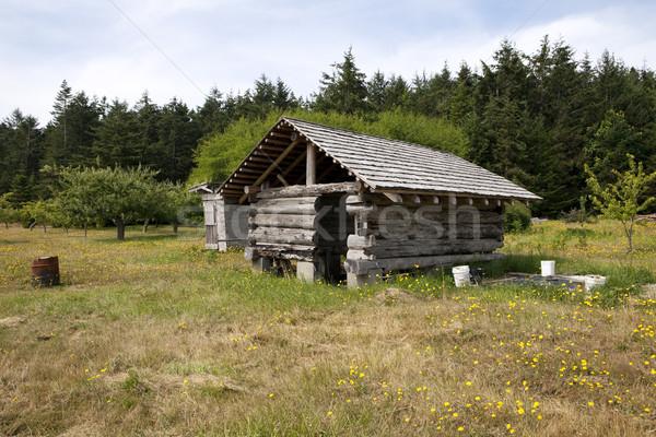 Pioneiro edifício fazenda velho celeiro lama Foto stock © searagen
