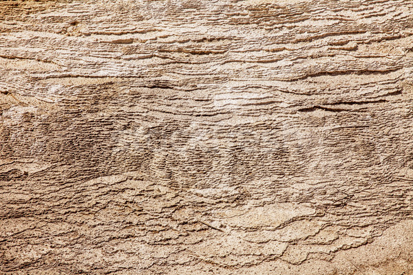 Texture With Layers of Calcium Carbonate Stock photo © searagen