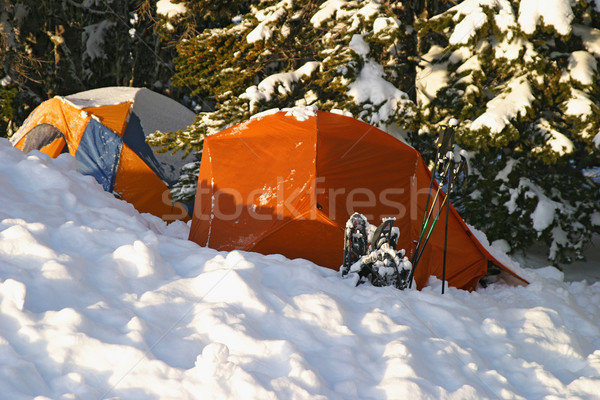 Snow Camping Stock photo © searagen