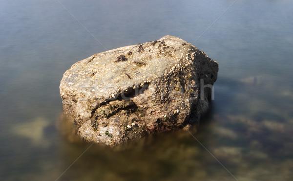 Boulder In Still Water Stock photo © searagen