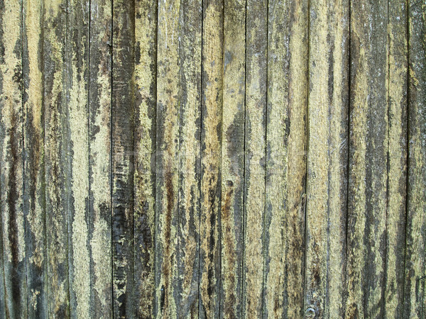 Wood Fence With Lichen Stock photo © searagen