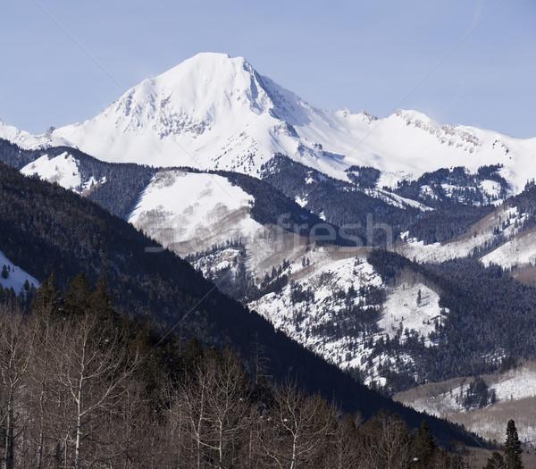 Colorado Mountain Wilderness Stock photo © searagen
