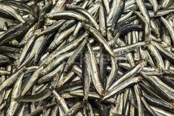 рыбы рынке отображения Барселона розничной Сток-фото © searagen