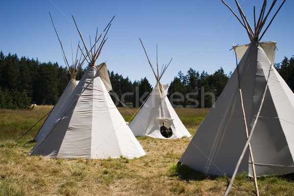 Teepee Camp In Meadow Stock photo © searagen