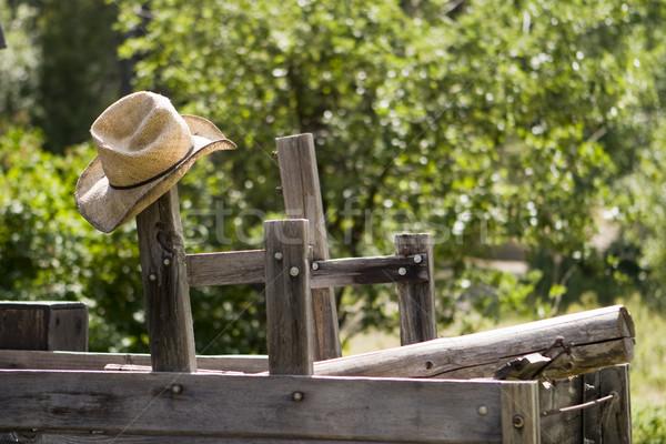 Cowboy Hat Stock photo © searagen