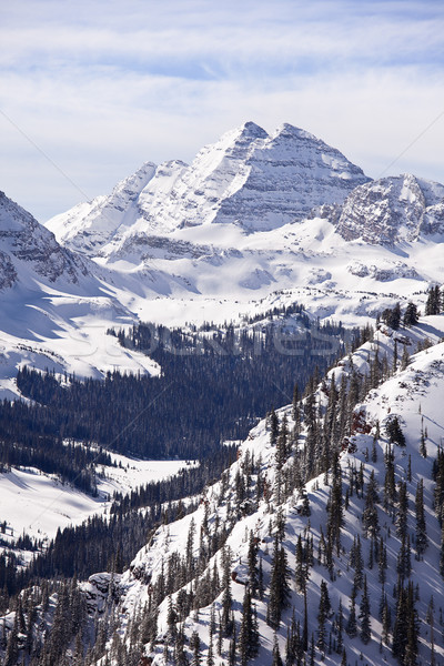 Gesztenyebarna hó tél tájkép kilátás függőleges Stock fotó © searagen