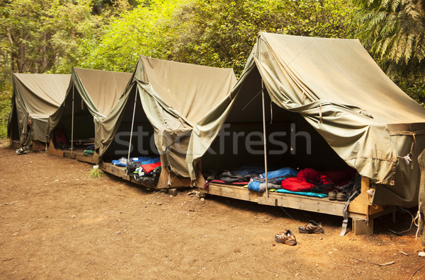 Roughing It At Summer Camp Stock photo © searagen
