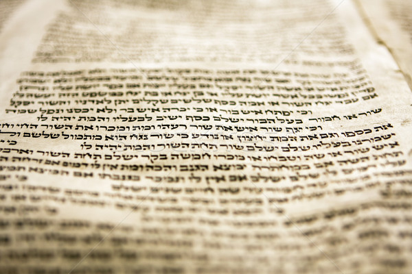 One Line Of Torah Stock photo © searagen
