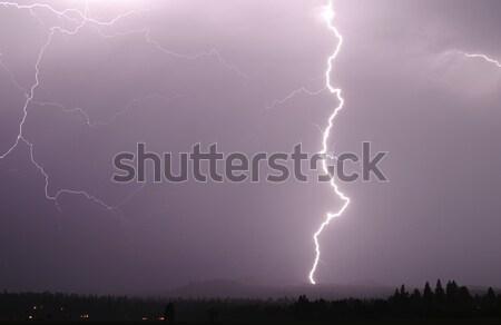 Lightning Bolt Stock photo © searagen