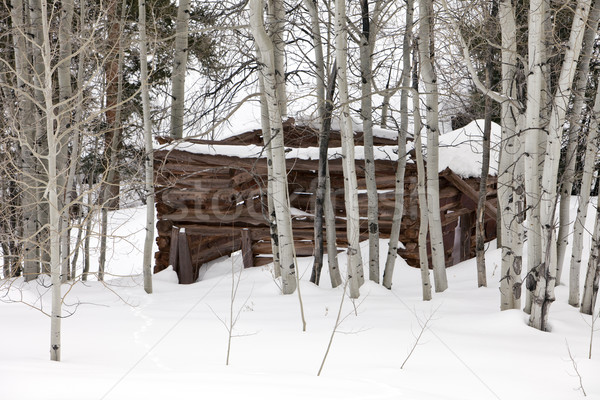 Ghost Cabin In Snow Stock photo © searagen