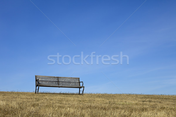 пусто скамейке Blue Sky парка древесины высушите Сток-фото © searagen