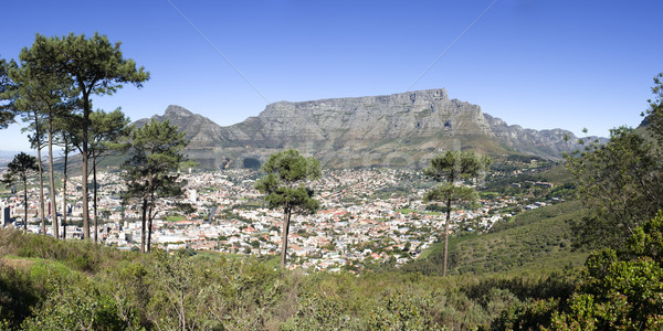 Table Mountain and Cape Town Stock photo © searagen
