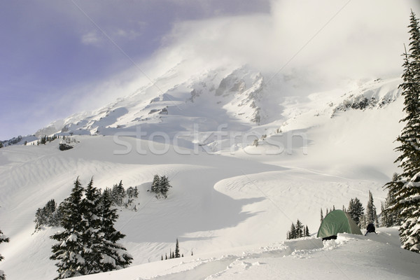 Winter Day On Mount Rainier Stock photo © searagen