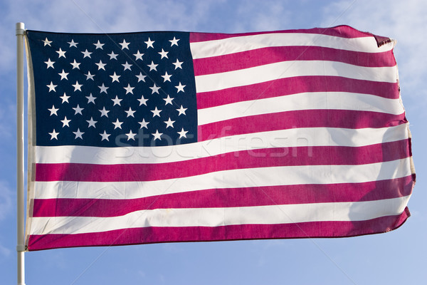 American Flag Stock photo © searagen