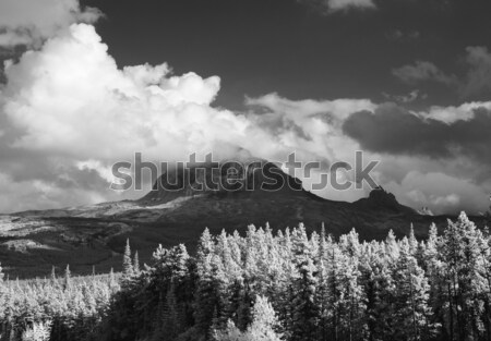 Big Chief Mountain Stock photo © searagen
