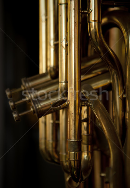Brass Musical Instrument Stock photo © searagen