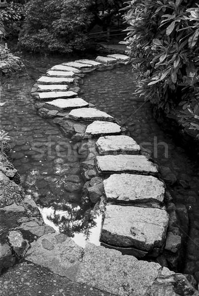Taşlar bahçe gölet yol siyah beyaz Stok fotoğraf © searagen