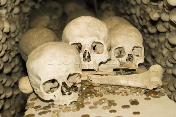 Bones and Coins Stock photo © searagen
